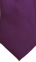 Berry Colour Satin Weft Tie